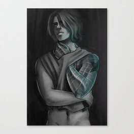 GREY BUCKY Canvas Print