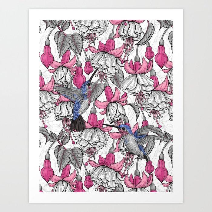 White fuchsia and hummingbirds Art Print