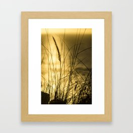 Golden Herbs Framed Art Print