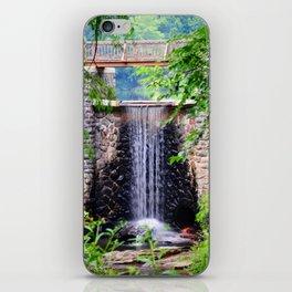 Biltmore Waterfall iPhone Skin