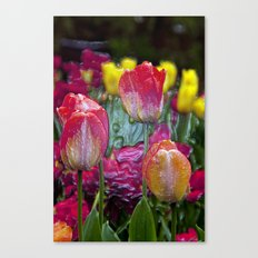 Glass Tulips  Canvas Print