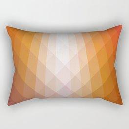 Illumination in Red Rectangular Pillow