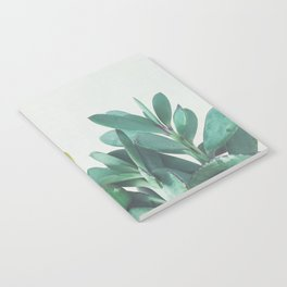 Crassula Group Notebook