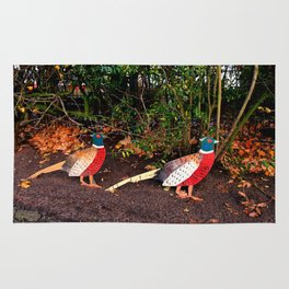 Two Pheasants On The Sidelines Rug