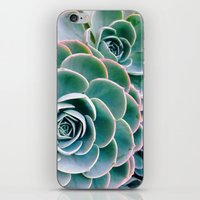 succulents iPhone & iPod Skins featuring Succulents by Ez Pudewa