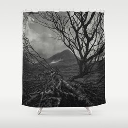 The web of winter Shower Curtain