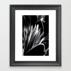 Just Grow Framed Art Print