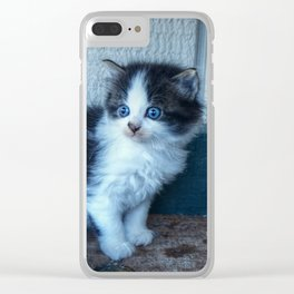 Black + White Kitten Clear iPhone Case