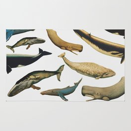 Color Whales Rug