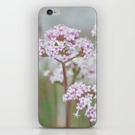 Tender Spring Flowers iPhone Skin