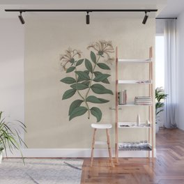The Fragrant Honeysuckle Wall Mural