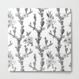 Cactus Rose Garden Stripe Black and White Metal Print