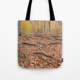 Autumn Avalon Forest Trail Tote Bag