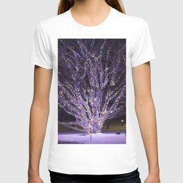 Longwood Gardens Christmas Series 41 T-shirt