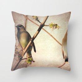 Rustic Cedar Waxwing Bird Modern Country Decor Farmhouse Art A398 Throw Pillow