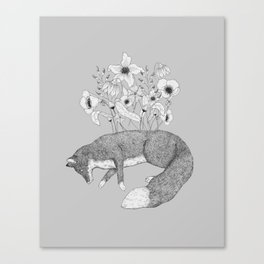 growing blooms Canvas Print