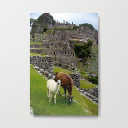 The Inhabitants of Machu Picchu Metal Print