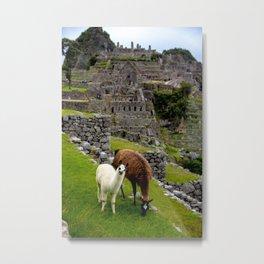 The Inhabitants of Machu Picchu Metal Print
