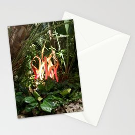Phipps candles Stationery Cards