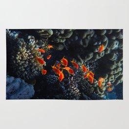 Sea Fier Rug