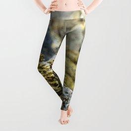 Seaweed Series 1 Leggings