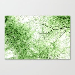 Look up to the sky and see... photography Canvas Print