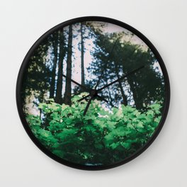 Muir Woods Wall Clock