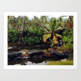 Hawaiian Queen's Bath Art Print