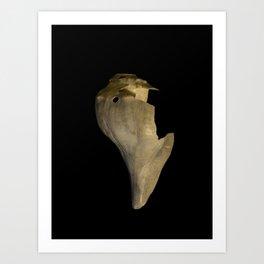 States of Erosion Image 7 Whelk Seashell Coastal Nature Photo Art Print