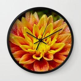 Orange and yellow dahlia Wall Clock