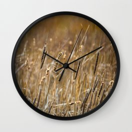 Wetlands Marsh in the Spring Wall Clock