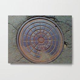 hole cover Metal Print