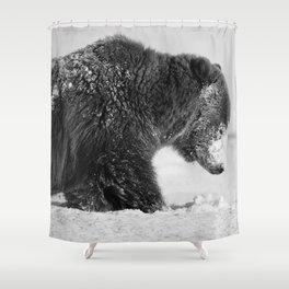 Alaskan Grizzly Bear in Snow, B & W - I Shower Curtain