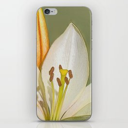White Lily and Bud (Digital Art) iPhone Skin