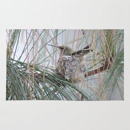 Pine Veil Nesting Rug