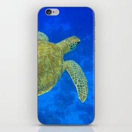 Wildlife: Green Turtle III iPhone Skin