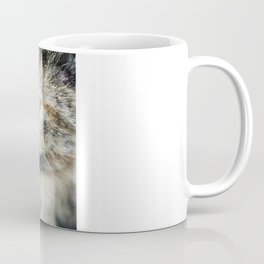 The (Homeless) Huntress Coffee Mug