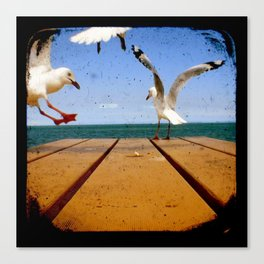 Seagulls - Number 3 from set of 4 Canvas Print
