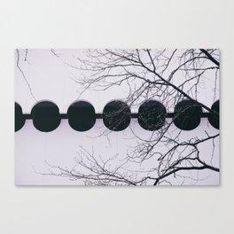 sərkyələr Canvas Print