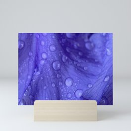 Iris Mini Art Print