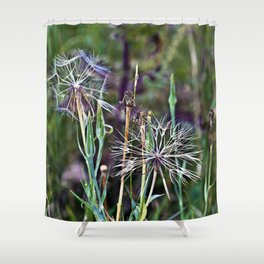 Summer Meadow with Wild Flowers Shower Curtain