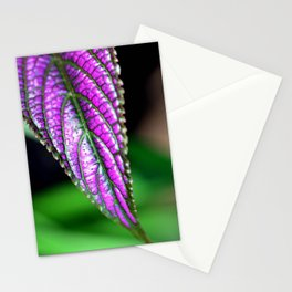 Jurassic Purple Stationery Cards