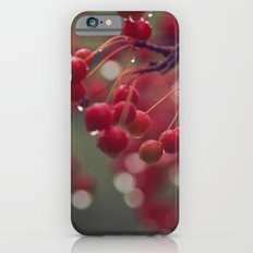 candied iPhone 6s Slim Case