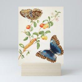 Maria Sibylla Merian Vintage Butterfly Print, 1702 Mini Art Print