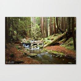 Crystal Stream Canvas Print