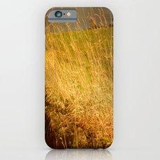 Moody Grasses. Slim Case iPhone 6s