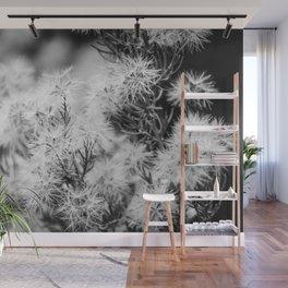 Black and White Desert Broom Wall Mural