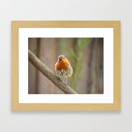 Watchoo lookin' at? Framed Art Print