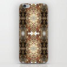 Pheasant 6 iPhone & iPod Skin