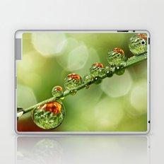 Autumn Dew Drops Laptop & iPad Skin